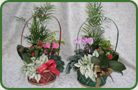 Yuletide Basket Medium